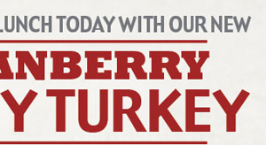 Excite your lunch today with our new Cranberry Tasty Turkey!